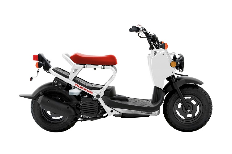 2017 Honda Ruckus side view